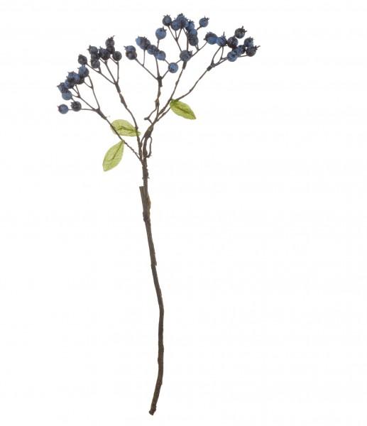ASA Blaubeerenzweig 46 cm